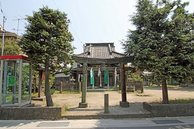 9550-5322A 巽神社 9.7m